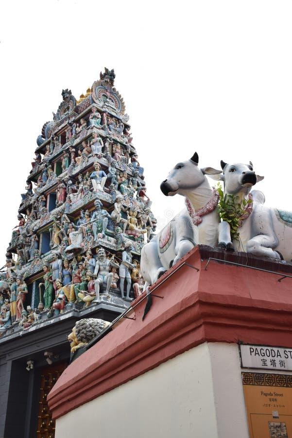 Chinatownsg stock foto