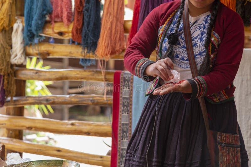 Chinchero, Cusco, Перу Декабрь 2018, процесс естественный красить альпаки и шерстей ламы, Quechua женщины стоковое изображение rf