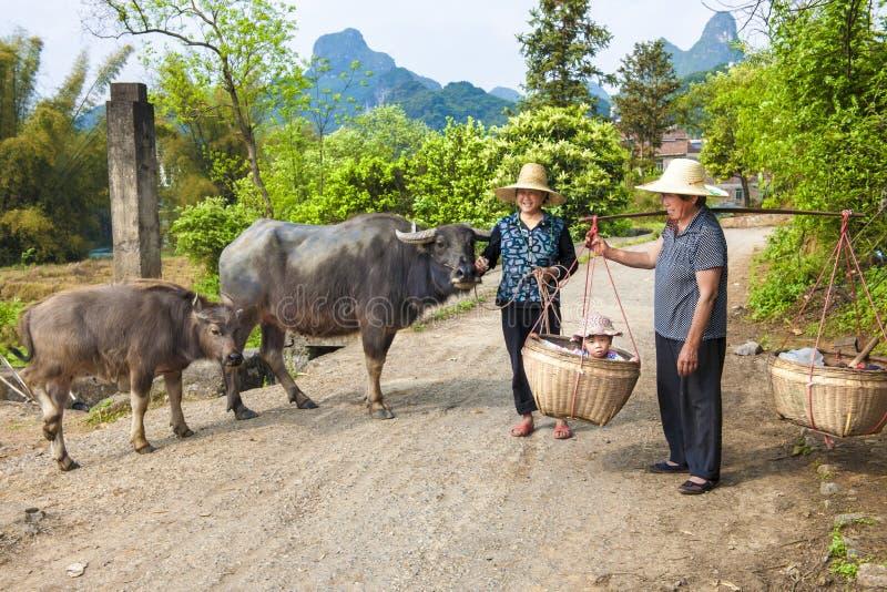 Chinees farmwomen met buffels en baby in manden royalty-vrije stock fotografie