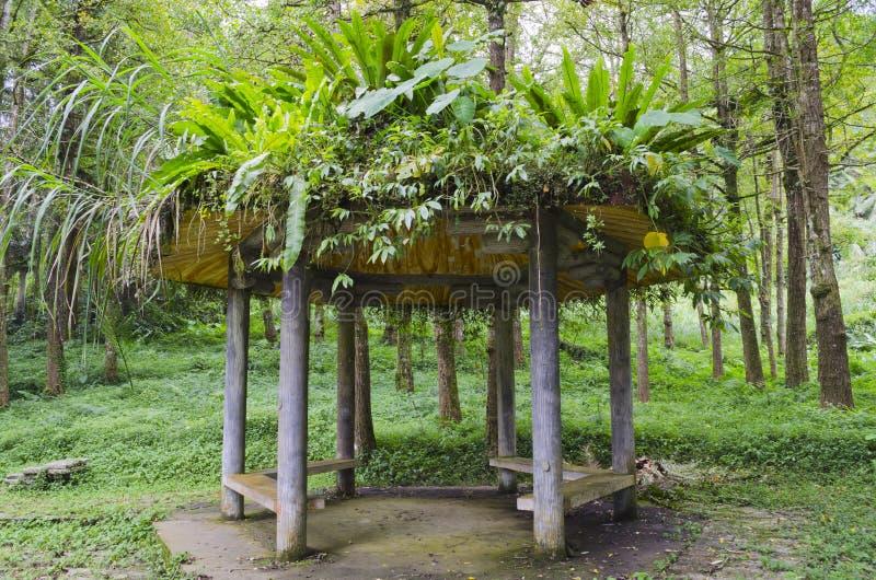 Chinees Paviljoen met de Hoed van de Vegetatie royalty-vrije stock fotografie