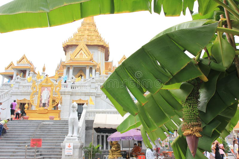 Chineese buddhist temple of Golden Buddha, Wat Traimit. Chineese buddhist temple of Golden Buddha Wat Traimit in Bangkok, Thaïland, East Asia. Golden Buddha royalty free stock photography