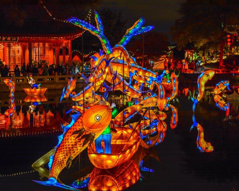 Chineese Plastische Verlichting bij Tuinen van Licht, Montreal, Queb stock afbeelding