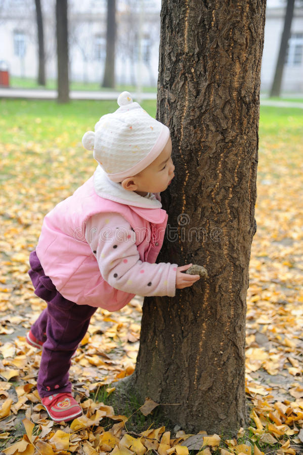 Download Chinese Baby In Autumn Park Stock Photo - Image: 17392208