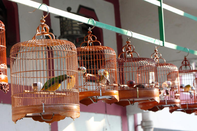 Download Chinese Bird Cage stock image. Image of market, cages - 22591357