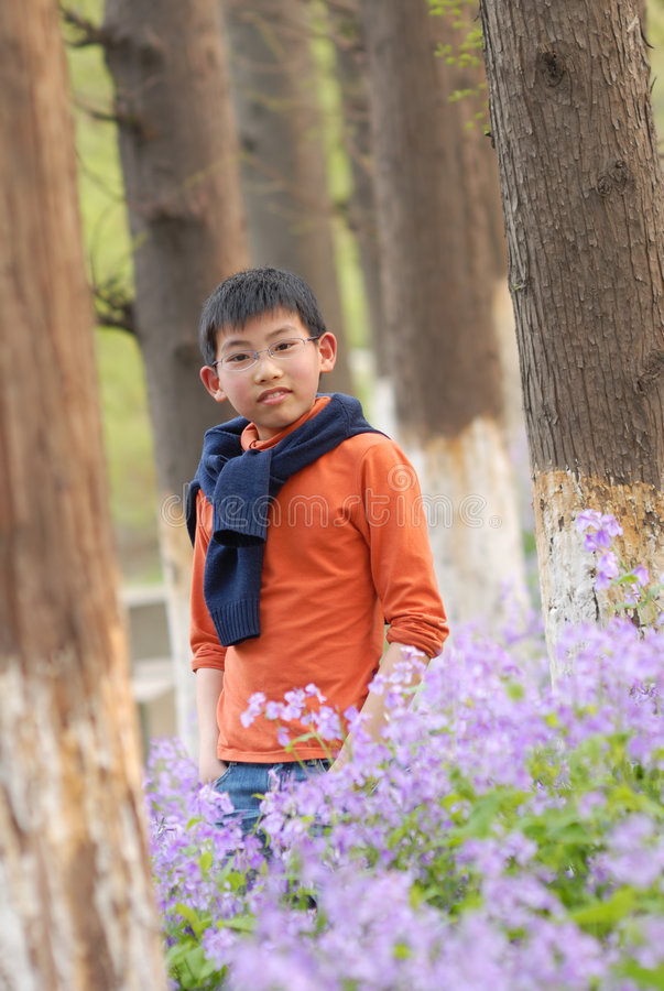 Download Chinese Boy Standing In The Grove Stock Photo - Image of grove, spring: 8885938