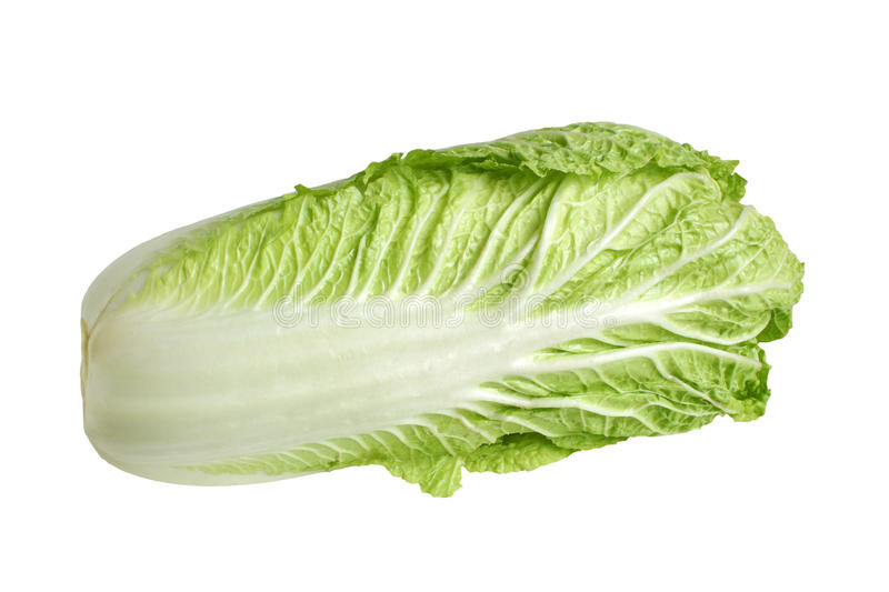 Chinese cabbage. Isolated on the white background stock photo