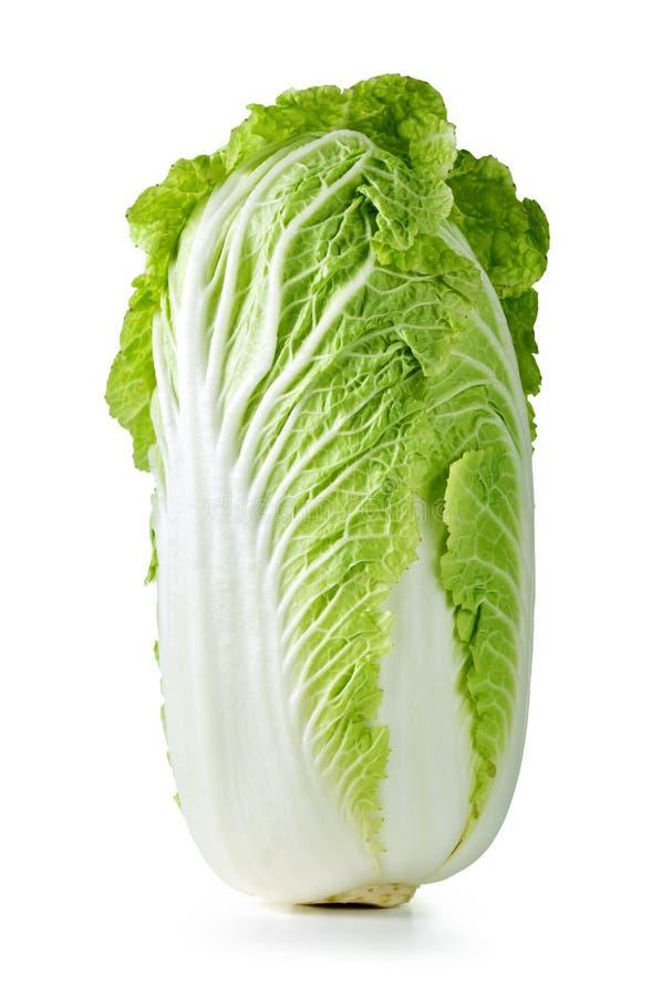 Chinese cabbage. Fresh chinese cabbage on white background, studio shot royalty free stock photos