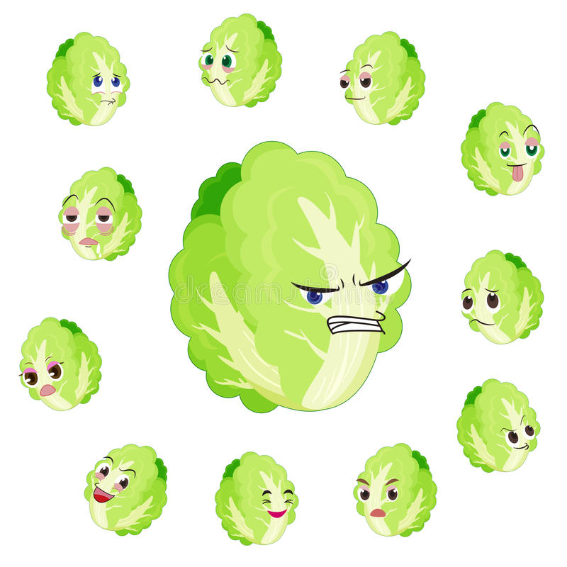 Chinese cabbage cartoon with many expressions royalty free illustration