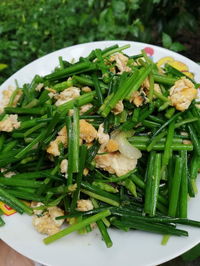 Chinese Chives/Garlic Chives. With eggs is street food treaditional food local food asian food stock image
