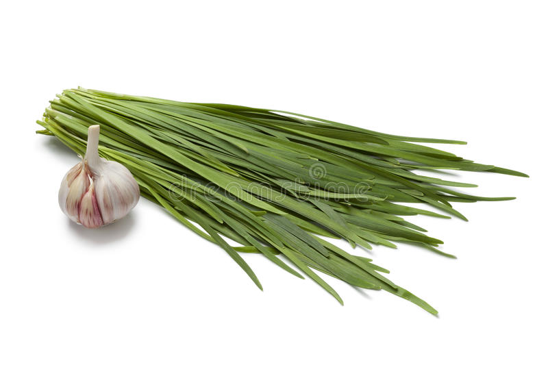 Chinese chives and garlic royalty free stock photo