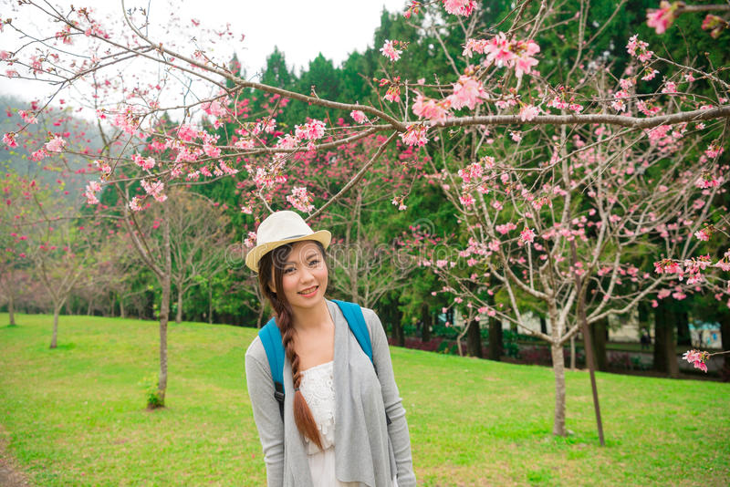 Chinese college student in the cherry blossom royalty free stock image