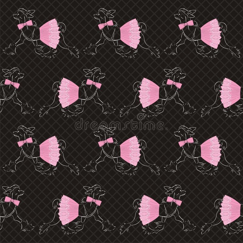 Chinese crested dog in a lace pink skirt with a bow and roses. Beautiful seamless pattern. stock illustration