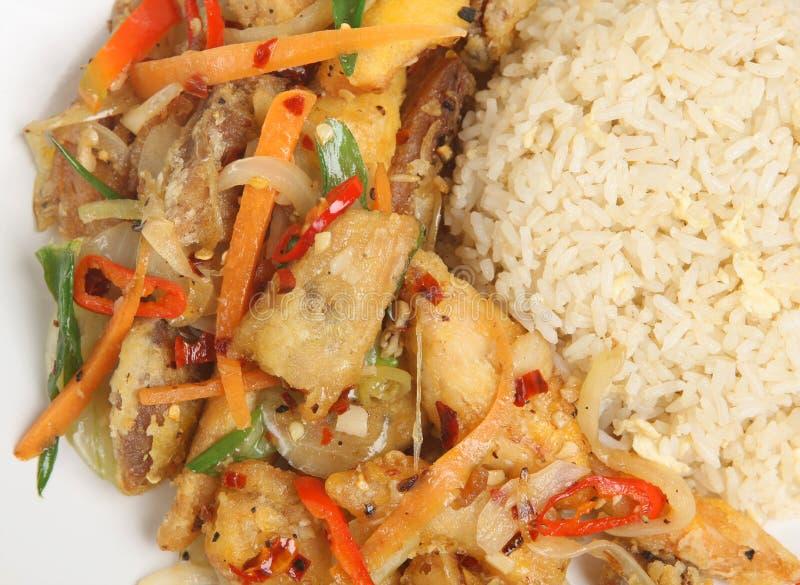 Chinese Crispy Shredded Chicken & Rice royalty free stock photo