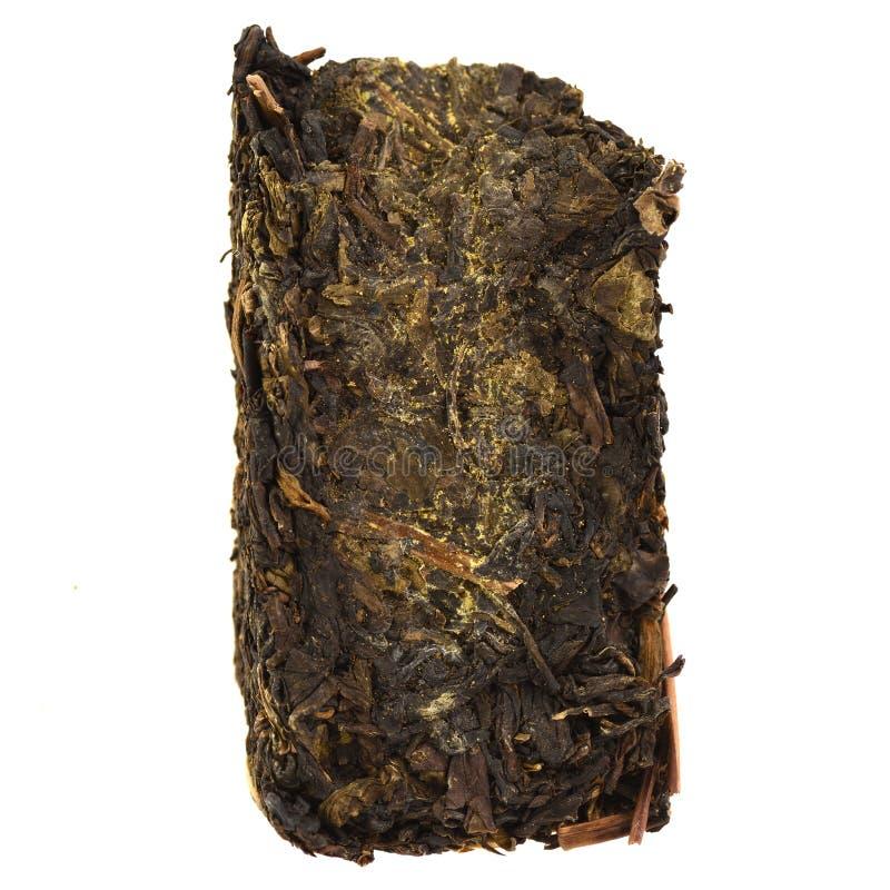 Chinese dark tea with yellow mold aka Golden Flower Gao Jia Shan Fu Zhuan Cha royalty free stock image