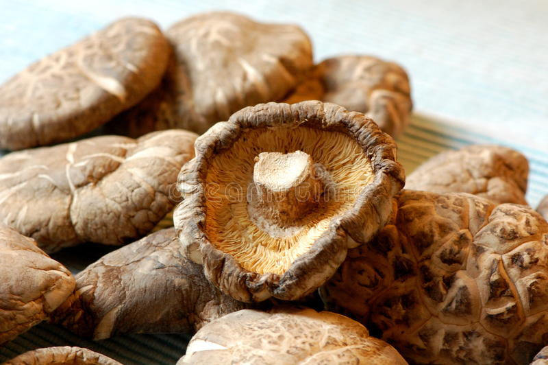 Chinese dried mushrooms. A pile of dried black mushrooms ready to rehydrate stock image