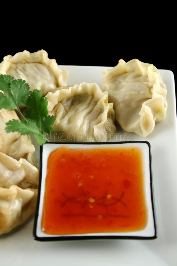 Chinese Dumplings 2. Delicious fried pork and vegetable Chinese dumplings ready to serve royalty free stock photos