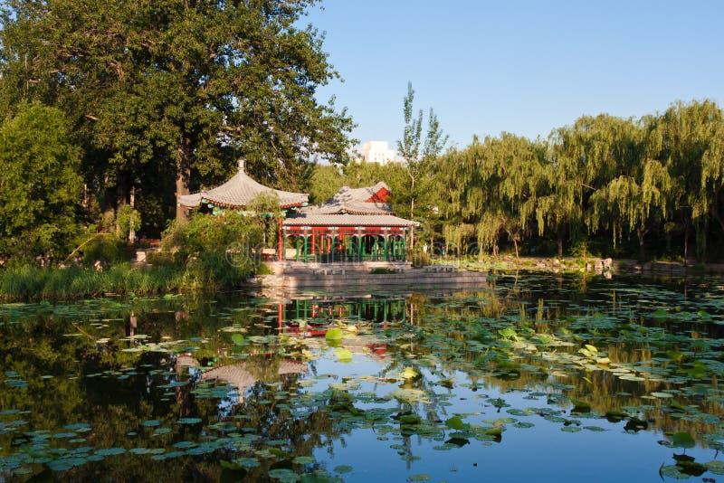 Download Chinese garden stock photo. Image of pond, idyllic, lake - 20048862