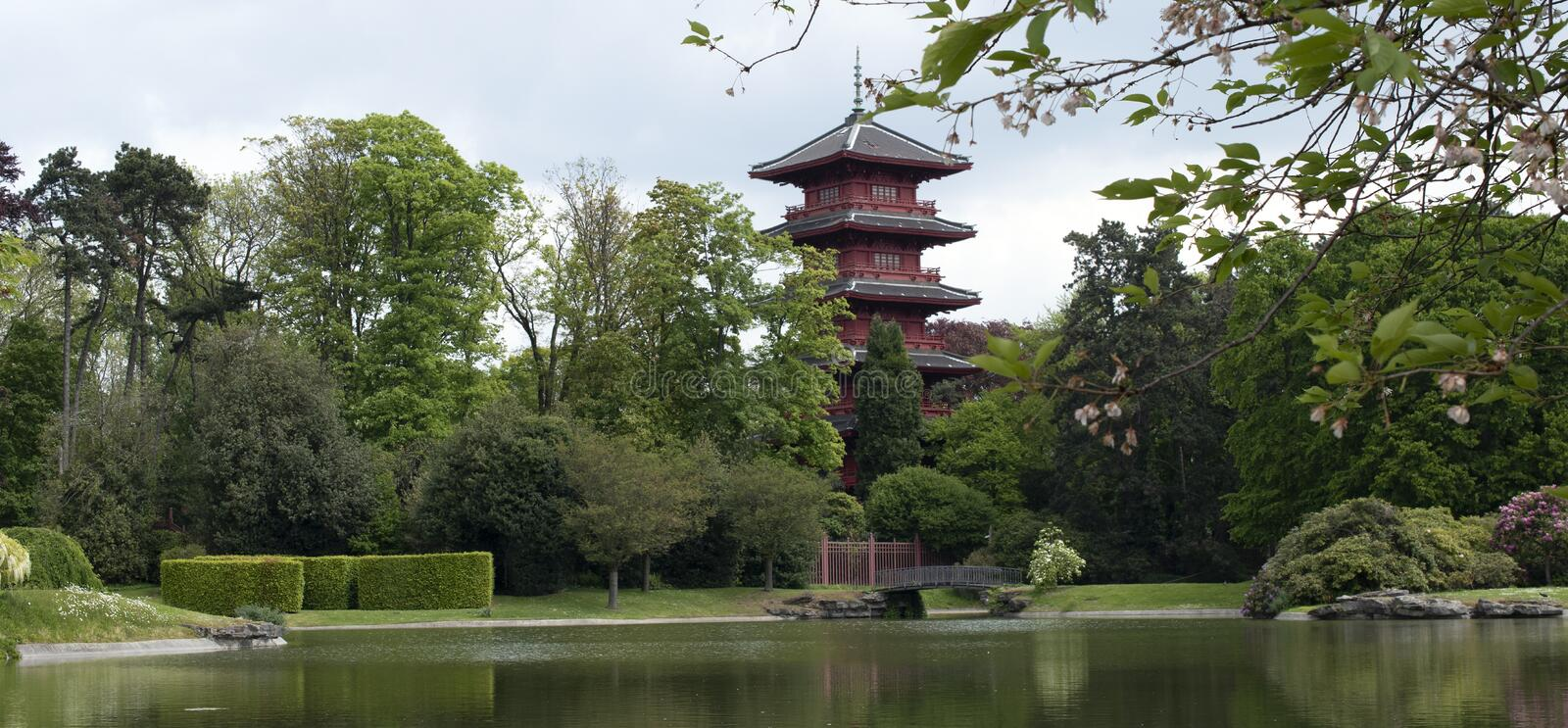 Chinese garden in Brussels stock photography