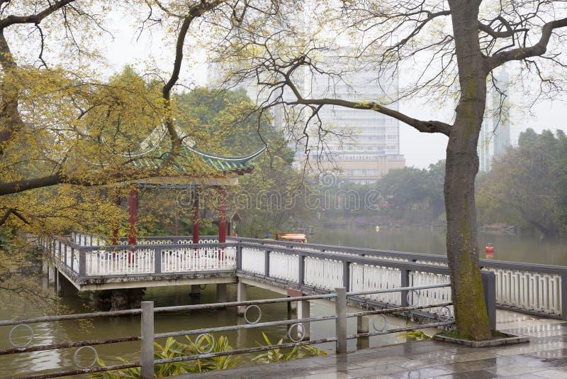 Chinese garden,Liuhou Park,Liuzhou,China. Autumn Chinese garden in a rainy day,with footbridge ,pavilion and old trees.Liuhou Park,Liuzhou City,Guangxi,China stock photos