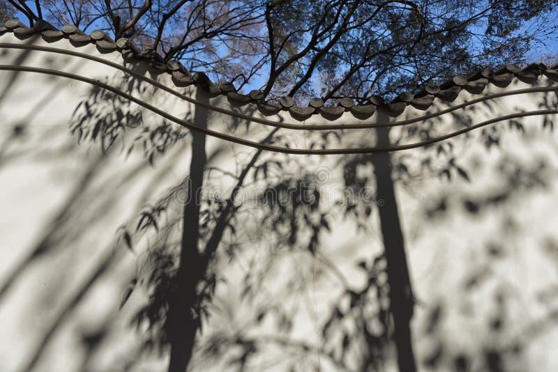 Chinese Garden, Sydney Australia royalty free stock image
