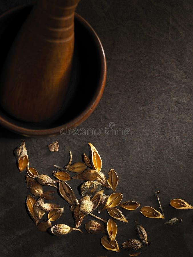 Chinese geneeskunde royalty-vrije stock afbeelding