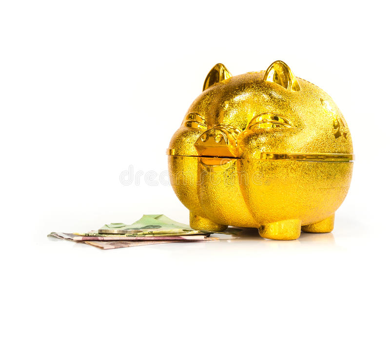 Chinese golden Pig piggy bank with thai money on the floor. On white background royalty free stock images