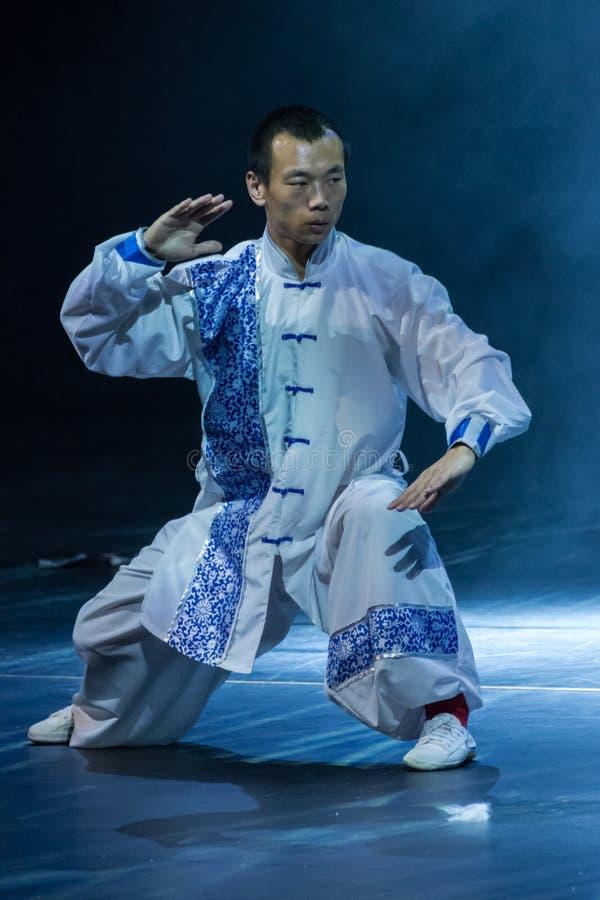 Martial Arts. Spring Festival 2013. Dublin stock photos