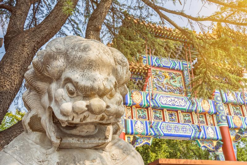 Chinese guardian lion sculpture in front of ancient Buddhist Lama temple in scenic morning light stock image