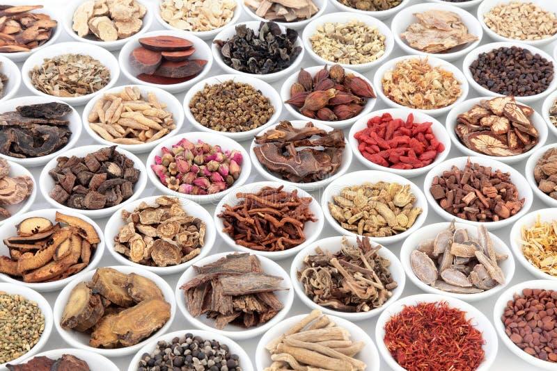Chinese Healing Herbs royalty free stock photos