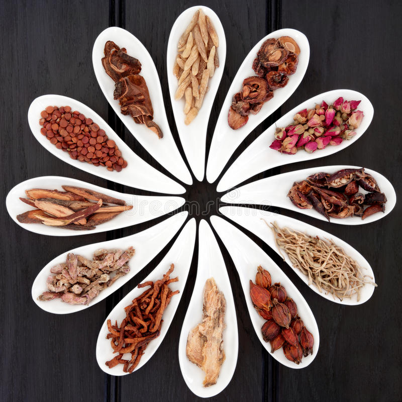 Chinese Healing Herbs stock images
