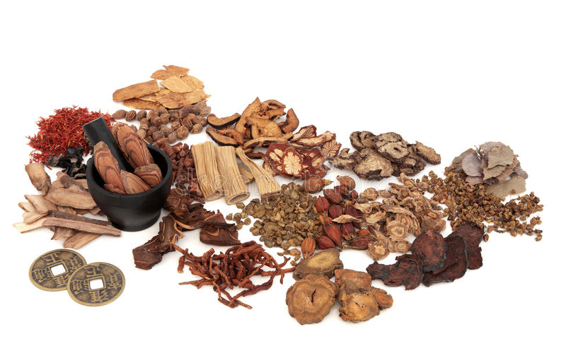Chinese Herb Ingredients. Used in traditional herbal medicine with mortar and pestle and old feng shui coins over white background stock photography