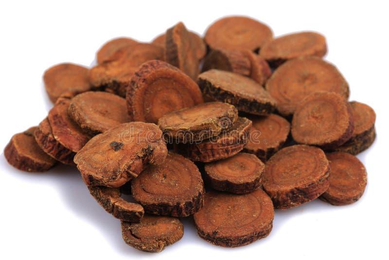 Chinese herb medicine of Glycyrrhizae Radix et Rhizoma or Liquorice Root. Close up royalty free stock image
