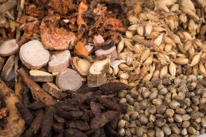Chinese herb medicine. Group of the chinese herb medicine royalty free stock photography