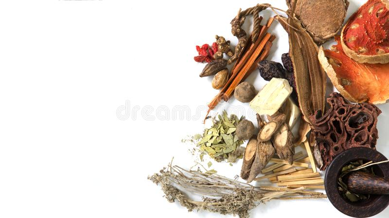 Chinese herb selection used in traditional alternative herbal medicine with mortar and pestle on white background stock photography