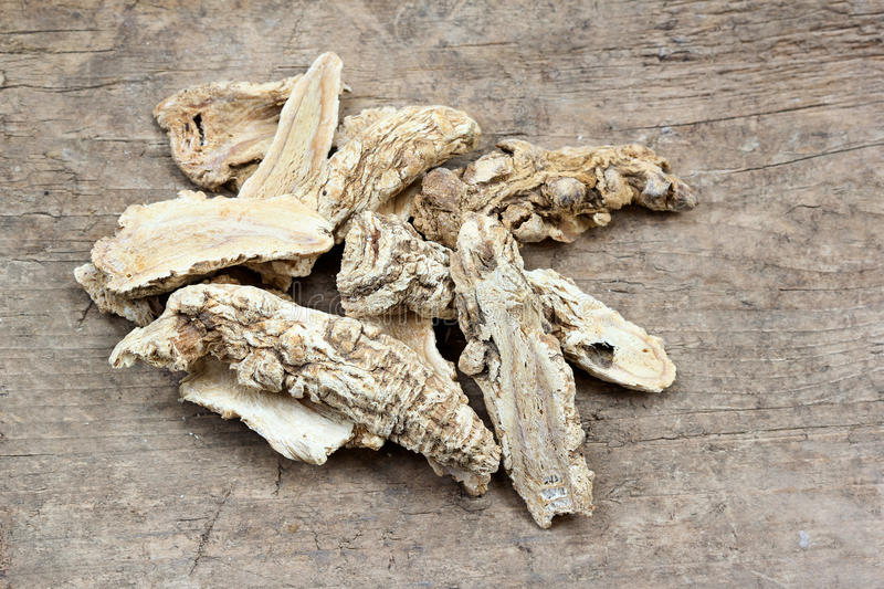 Chinese Herbal medicine - Dang Gui Ginseng. (Angelica Sinensis) on wooden board stock image