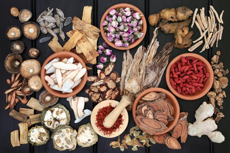 Chinese Herb Selection. Chinese herbal medicine with herbs in terracotta bowls and loose with wooden mortar and pestle on dark wood background. Top view royalty free stock images