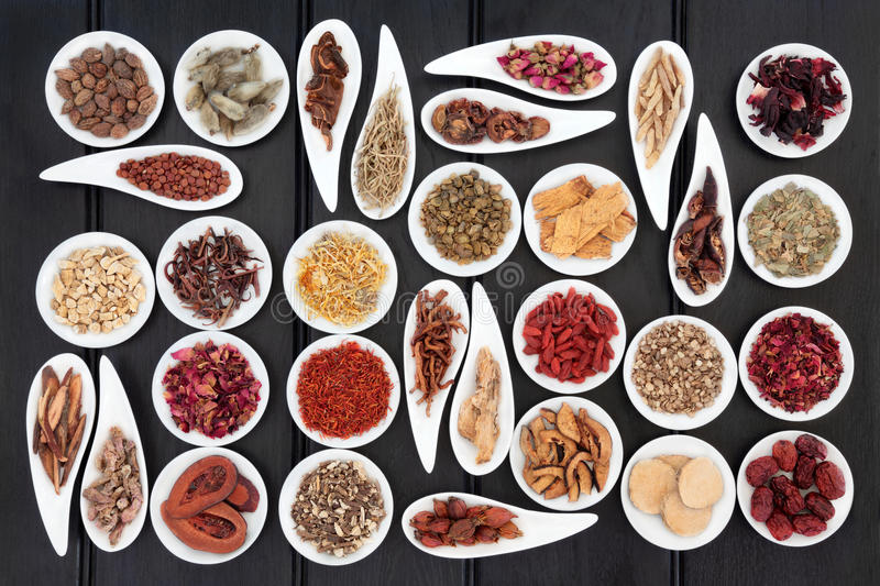Chinese Herbal Medicine. Large chinese herbal medicine selection in white porcelain dishes stock photography