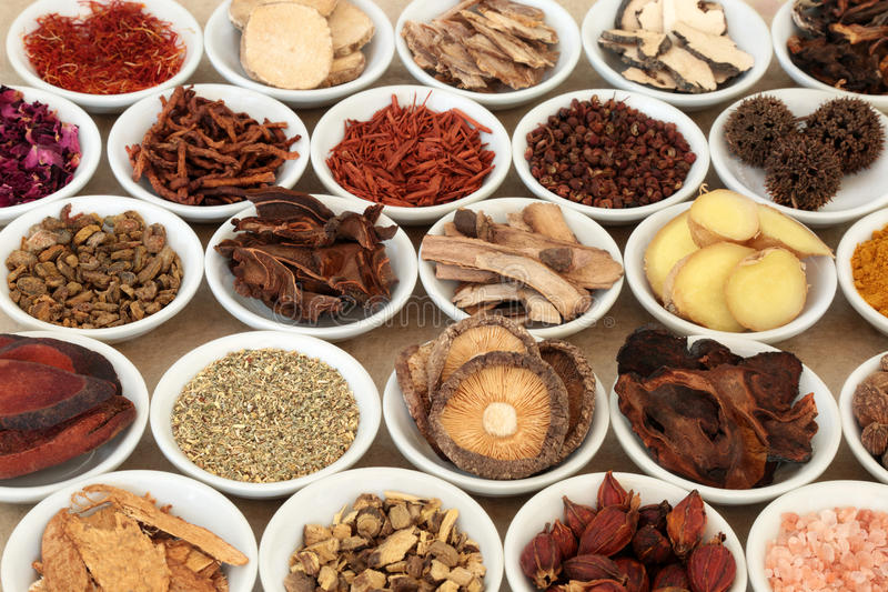 Chinese Herbal Medicine. Selection in white porcelain bowls royalty free stock photos