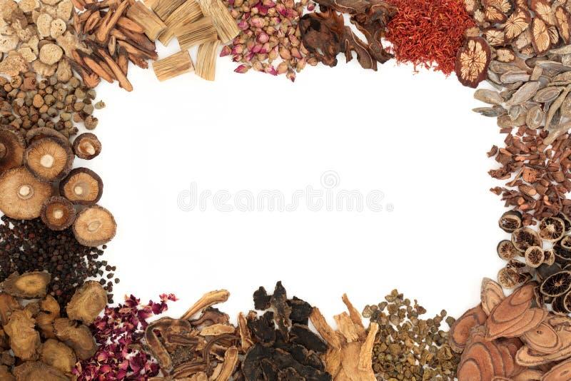 Chinese Herbal Medicine Border stock image