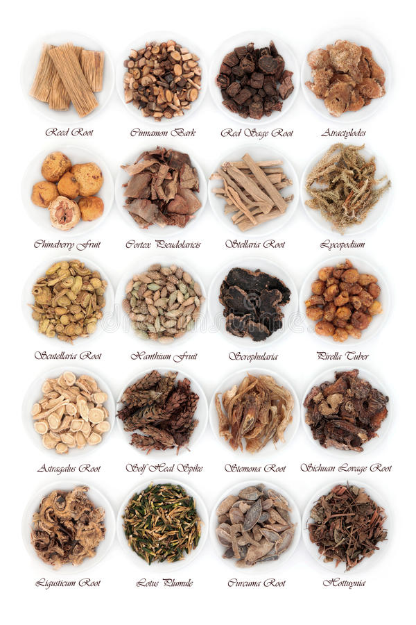 Chinese Herbs stock photos