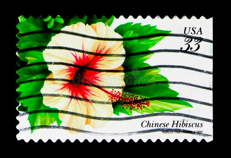Chinese Hibiscus, Tropical Flowers Issue serie, circa 1999. MOSCOW, RUSSIA - NOVEMBER 24, 2017: A stamp printed in USA shows Chinese Hibiscus, Tropical Flowers royalty free stock image
