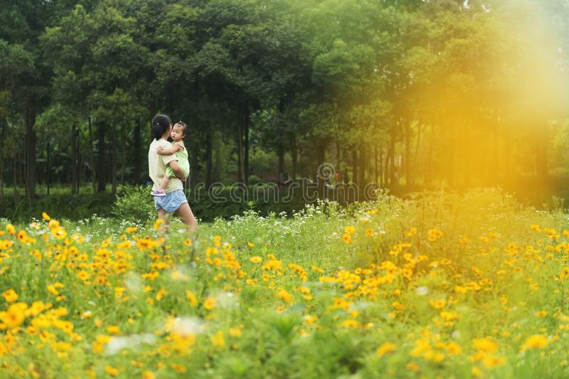 Chinese holding little daughter in arms walking in field royalty free stock images