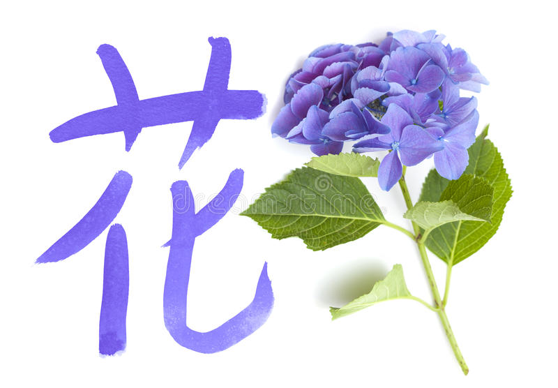 Chinese Or Japanese Symbol Stock Photo Image Of Flora 92526476