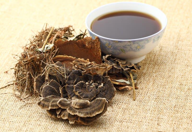 Chinese kruidengeneeskunde met ingrediënt stock foto's