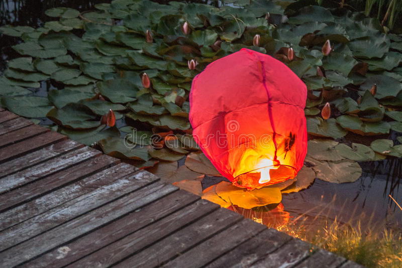 Chinese Lantern in water stock images