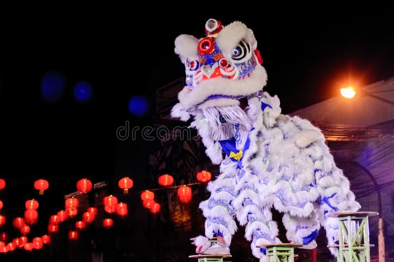 Chinese lion costume dance during Chinese New Year celebration royalty free stock photography