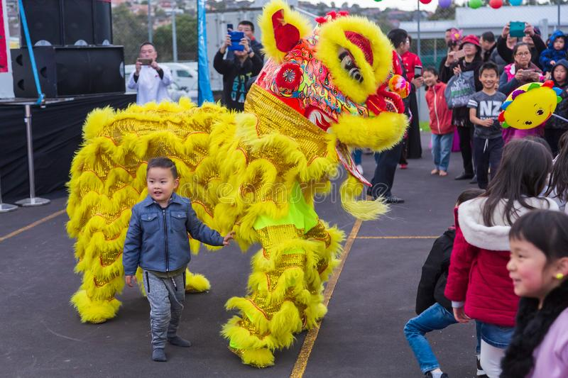 Chinese lion dancers in bright yellow costume entertaining a crowd royalty free stock photos