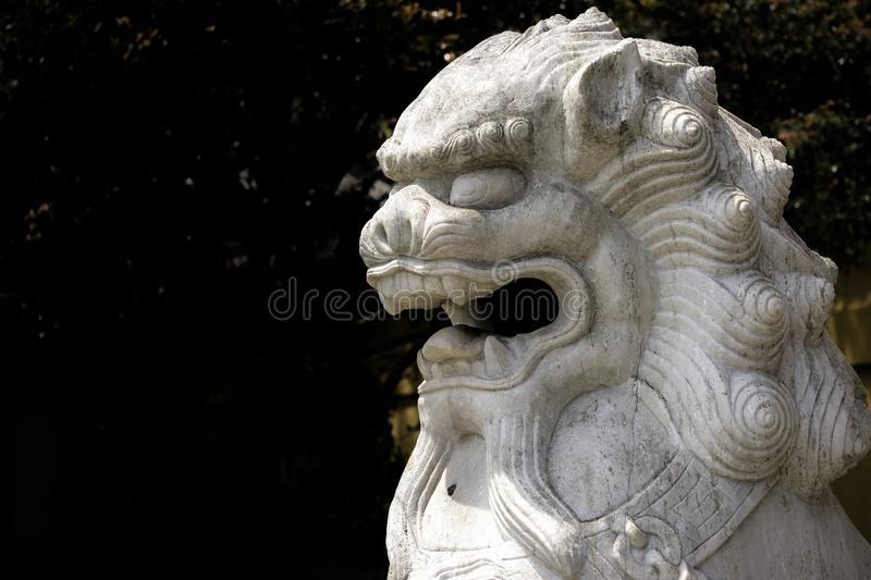 The Chinese Lion. royalty free stock photography