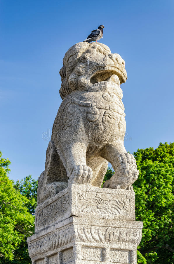 Chinese Lions 'Chi Tza' at The Petrovskaya embankment. Saint Petersburg, Russia. Chinese Lions 'Chi Tza' at The Petrovskaya embankment with a pigeon on the lion stock images