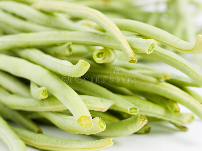Chinese long beans detail. And isolated on white background stock image